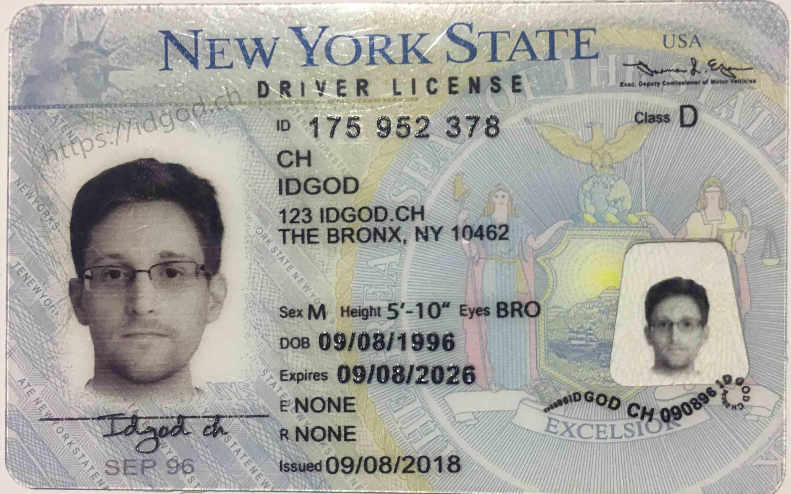 Fake Driver License New York